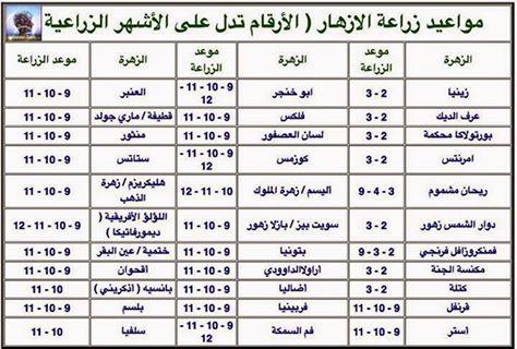 مواعيد زراعة الازهار شبكة المزارعين الليبيين